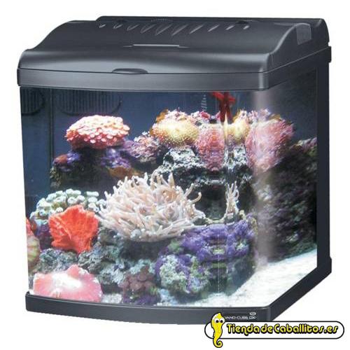 Jbj acuario nano cubo mt 40 45 litros for Acuario marino precio